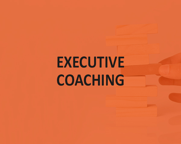 07 executive coaching